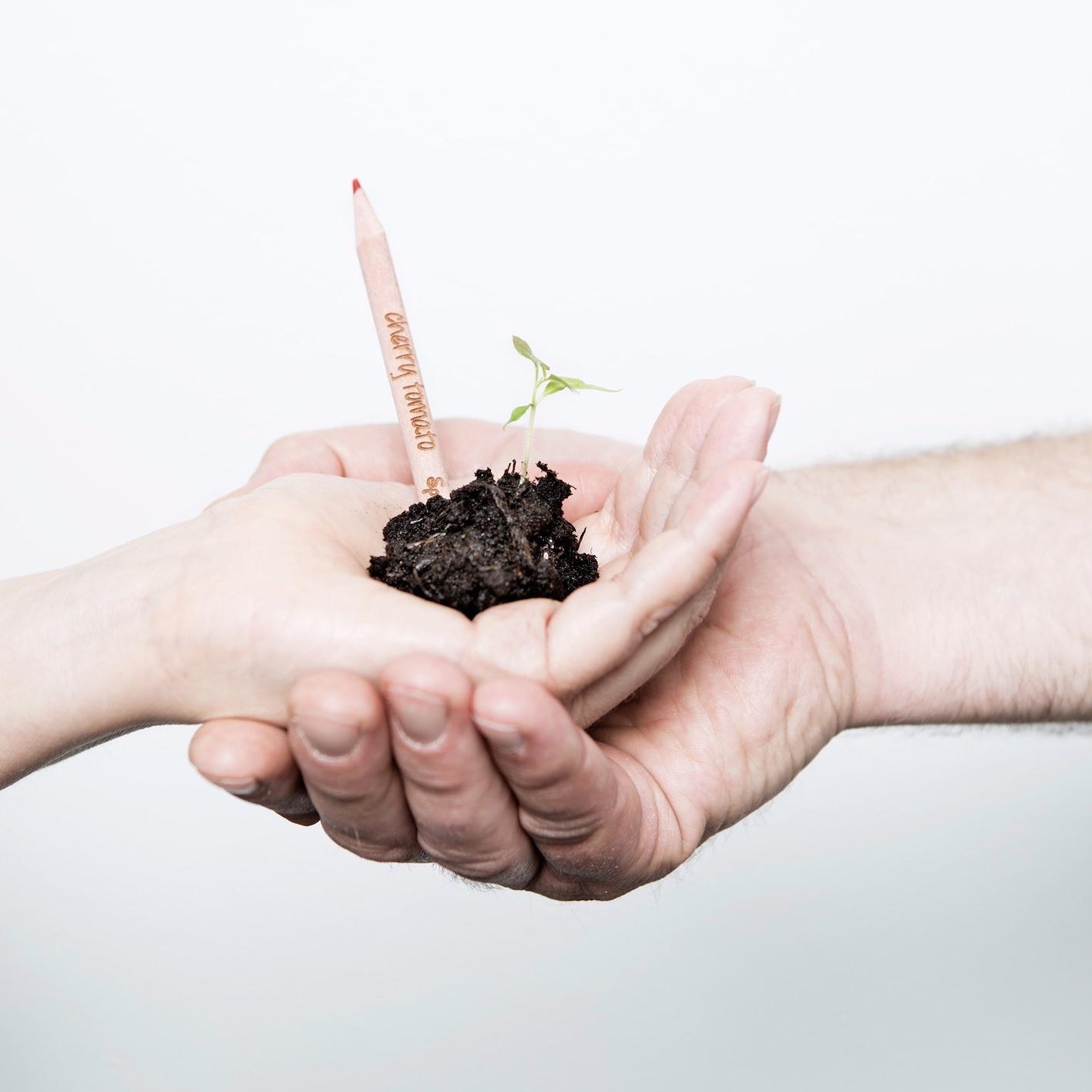 Sprout bloeipotloden
