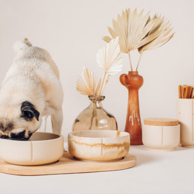 Set Dog Bowls