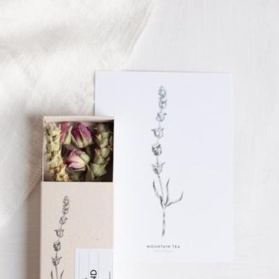 Rose Blend & Illustrated card