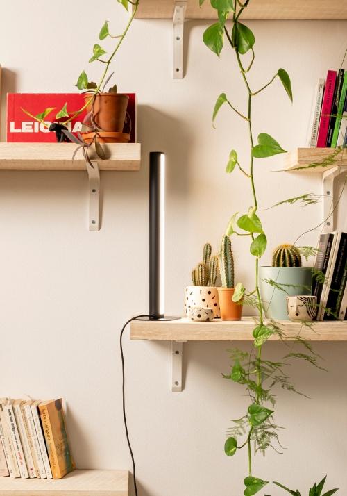 PlantSpectrum