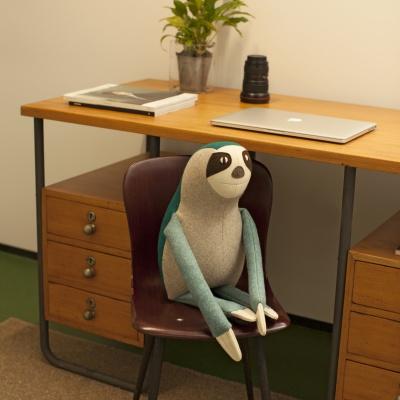 BILLY The Pygmy Three-Toed Sloth